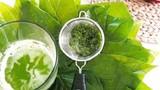 Làm nước súc miệng khử khuẩn từ các loại lá trong vườn