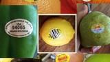 Ý nghĩa những con số ít biết trên nhãn mác trái cây ngoại nhập