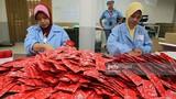 Bên trong nhà máy sản xuất bao cao su lớn nhất thế giới