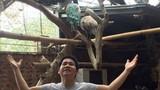 Những vật nuôi hàng nghìn USD tại biệt thự của Trọng Tấn