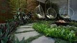 Lưu ý trong thiết kế sân vườn nhất định phải biết