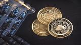 Bitcoin có thể chạm đáy 2.700 USD, liệu 'bóng ma' lịch sử có xuất hiện