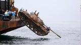 Lạ kỳ đưa xe tăng xuống biển để... bảo vệ cá