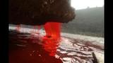 Video: 5 nguồn nước độc và nguy hiểm nhất thế giới