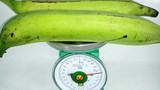 Chuối khổng lồ hơn nửa cân/quả gây sốc ở Trà Vinh