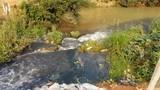 Nước suối đổi màu đen kịt, Công ty mía đường Sơn La bị tố gây ô nhiễm
