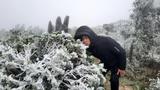 Nhiệt độ xuống thấp, núi Mẫu Sơn xuất hiện băng giá