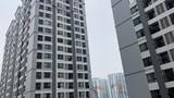 Chung cư cao tầng ở Hà Nội chịu được động đất cấp mấy?