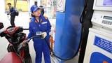 Giá xăng có thể sẽ tăng- giảm 10 ngày/lần