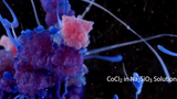 Những phản ứng hóa học đẹp kỳ diệu đến không ngờ