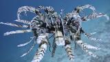 Sinh vật lạ giống như chim bơi dưới biển gây xôn xao