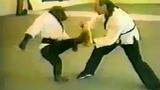 Nể phục màn biểu diễn võ thuật tài ba của chú tinh tinh này