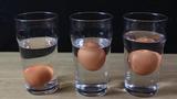 Điều gì xảy ra khi thả trứng vào nước muối?