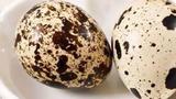 Cách chế biến trứng cút khiến món ăn trở thành vị thuốc bổ