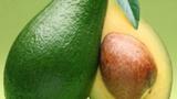 Video: Các lợi ích sức khỏe bất ngờ từ hạt bơ