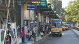 Nhức mắt cảnh xe buýt nhái lộng hành tại Hà Nội
