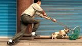 Truyền hình Anh làm phóng sự nạn trộm chó ở Việt Nam