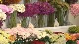 Mách bạn gái mẹo hay giữ hoa tươi lâu