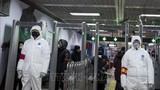 Phần Lan xác nhận trường hợp đầu tiên nhiễm virus corona