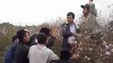 Bạo gan vào vườn đào trộm xe, bị đánh hội đồng