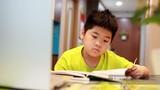 Xem buổi học online nhiều sắc thái của học sinh cấp 1