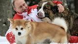 Không ngờ Tổng thống Nga Putin yêu quý loài chó thế này!