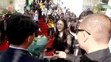Kim Tae Hee được đưa đón bằng xế sang, fan vây kín ở HN