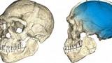 Hé lộ bằng chứng chấn động về nguồn gốc nhân loại
