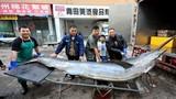 Cận cảnh cá kiếm khổng lồ nặng 280kg vừa bắt được