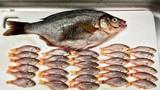 Bi thảm cá chép biển mẹ bị mổ bụng lấy cá con
