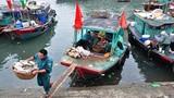 Vịnh Hạ Long đang oằn mình vì nước thải và rác