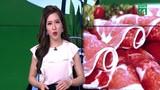 Video: Thực hư thông tin thịt bò Mỹ giá rẻ, hết hạn tuồn vào Việt Nam