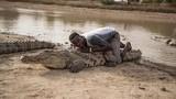 Huyền bí nơi xem cá sấu tử thần như thần thánh