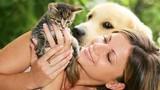 Sở thích nuôi chó, mèo tiết lộ tính cách của bạn