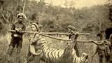 Ảnh độc: Cảnh săn bắn ở Việt Nam thời Pháp thuộc