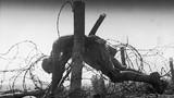 Ám ảnh CTTG1: Xác binh sĩ nằm trên dây thép gai