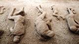 Khám phá thành phố cổ La Mã có xác chết hóa đá