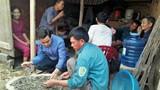 Nghệ An: Đào móng nhà, phát hiện 10kg tiền xu cổ