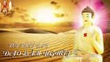 Phật dạy về đạo làm người để cả đời an nhàn hạnh phúc