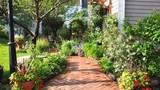 Vườn tràn đầy sắc màu tươi tắn của các loài hoa của cô giáo tiếng Anh