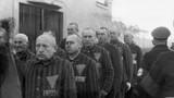 Người đồng tính nam bị Hitler hành hạ khủng khiếp thế nào?