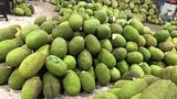 Bòn bon 2 ngàn/kg, mít Thái 4 ngàn/kg, trái cây giá siêu rẻ