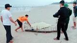 Hãi hùng phát hiện xác người không đầu trôi vào bờ biển
