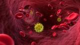 Thành tựu bất ngờ trong công cuộc chữa trị HIV/AIDS năm 2016