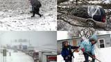 Bão mùa đông điên cuồng tàn phá nước Mỹ