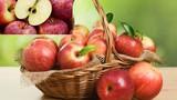 Khuyến cáo ăn nhiều hạt táo dễ ngộ độc nguy hiểm tính mạng