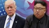 Đặc phái viên Mỹ tới Triều Tiên, chuẩn bị Hội nghị thượng đỉnh lần 2