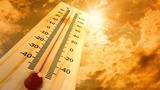 Một số bài thuốc dân gian trị say nắng hiệu quả ai cũng cần biết