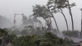 Áp thấp nhiệt đới gây lốc xoáy, vòi rồng ở Nam Bộ