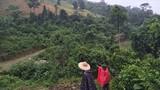Chuyện chưa kể về chiếc lồng gà trong thảm án giữa rừng Lào Cai